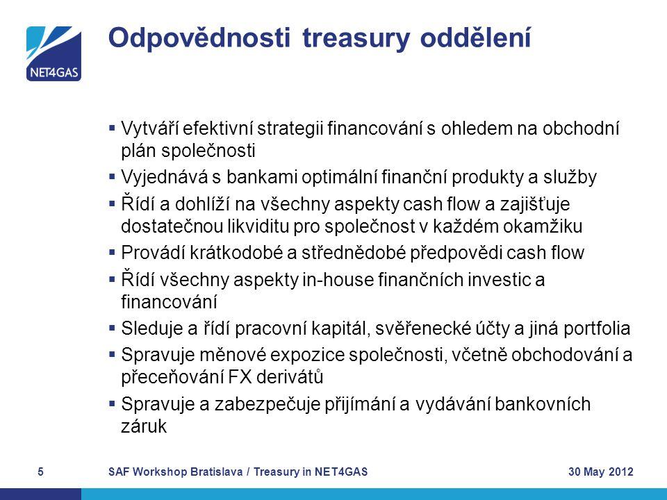  Vytváří efektivní strategii financování s ohledem na obchodní plán společnosti  Vyjednává s bankami optimální finanční produkty a služby  Řídí a d