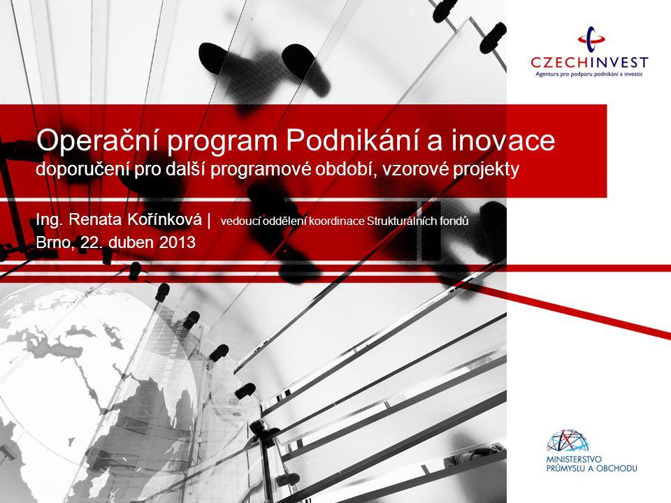 Operační program Podnikání a inovace doporučení pro další programové období, vzorové projekty Ing.