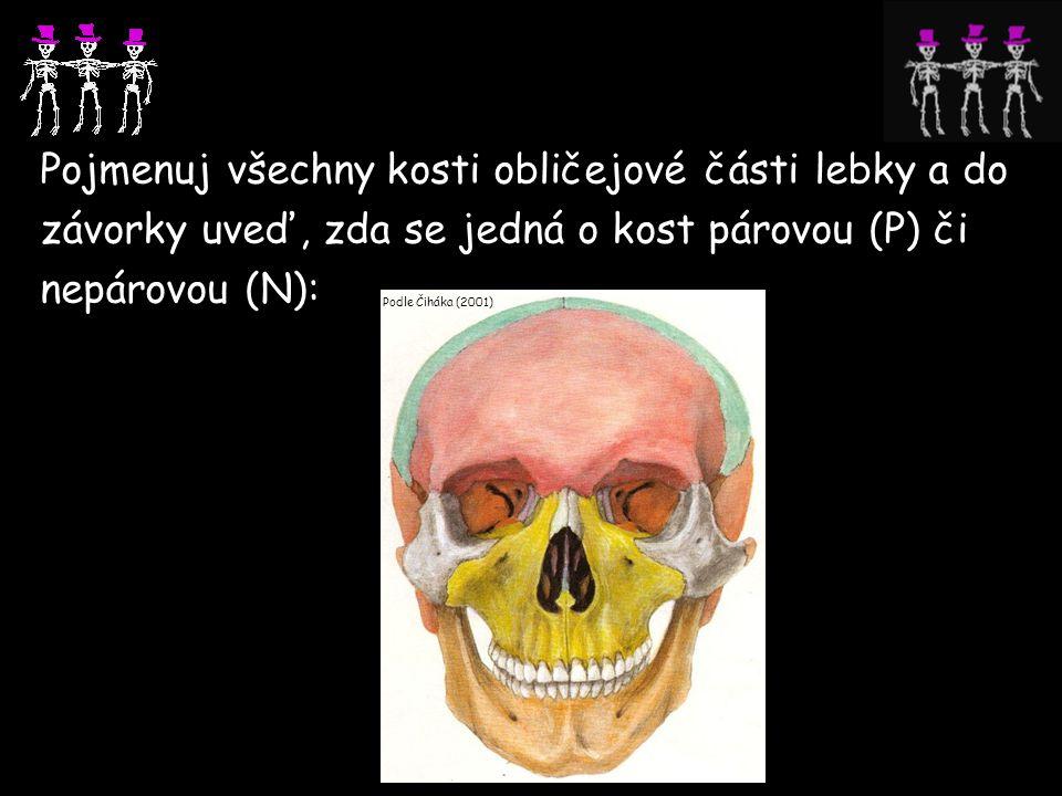 Pojmenuj všechny kosti obličejové části lebky a do závorky uveď, zda se jedná o kost párovou (P) či nepárovou (N): Podle Čiháka (2001)