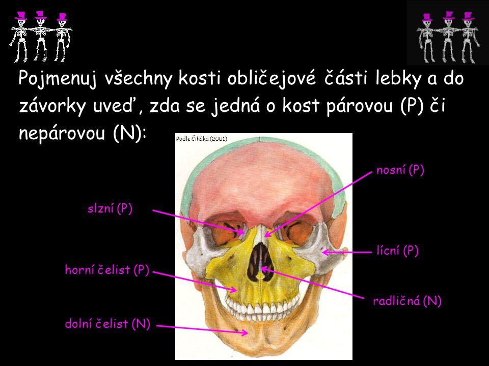 Pojmenuj všechny kosti obličejové části lebky a do závorky uveď, zda se jedná o kost párovou (P) či nepárovou (N): Podle Čiháka (2001) slzní (P) horní