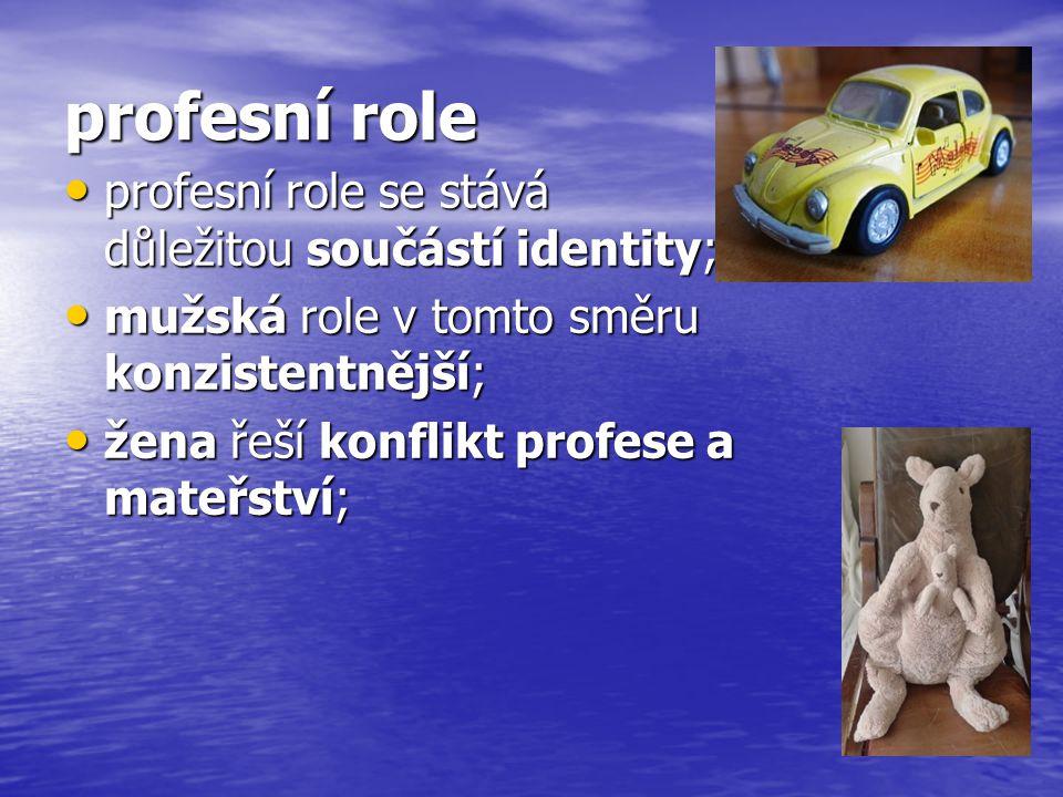 profesní role profesní role se stává důležitou součástí identity; profesní role se stává důležitou součástí identity; mužská role v tomto směru konzistentnější; mužská role v tomto směru konzistentnější; žena řeší konflikt profese a mateřství; žena řeší konflikt profese a mateřství;