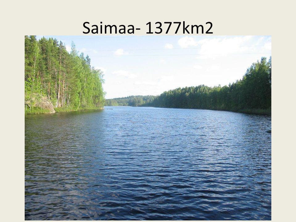 Saimaa- 1377km2