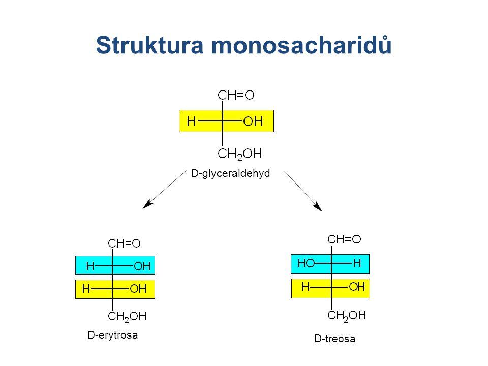 Struktura monosacharidů D-glyceraldehyd D-erytrosa D-treosa