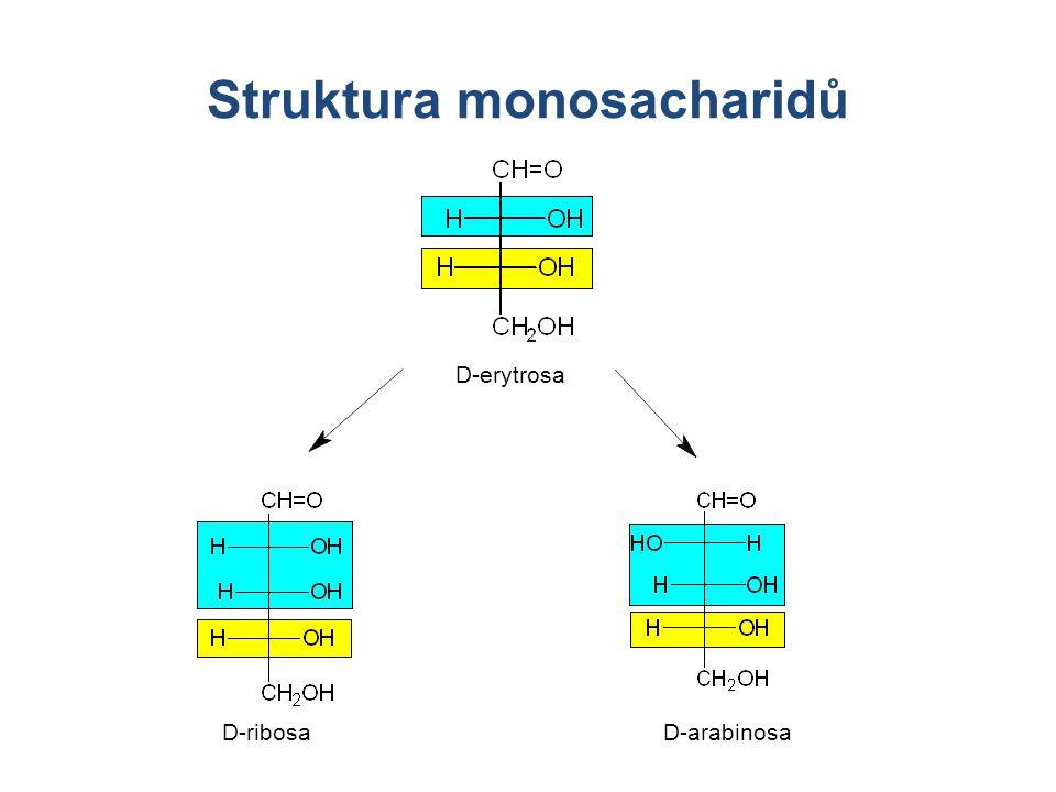Struktura monosacharidů D-ribosaD-arabinosa D-erytrosa