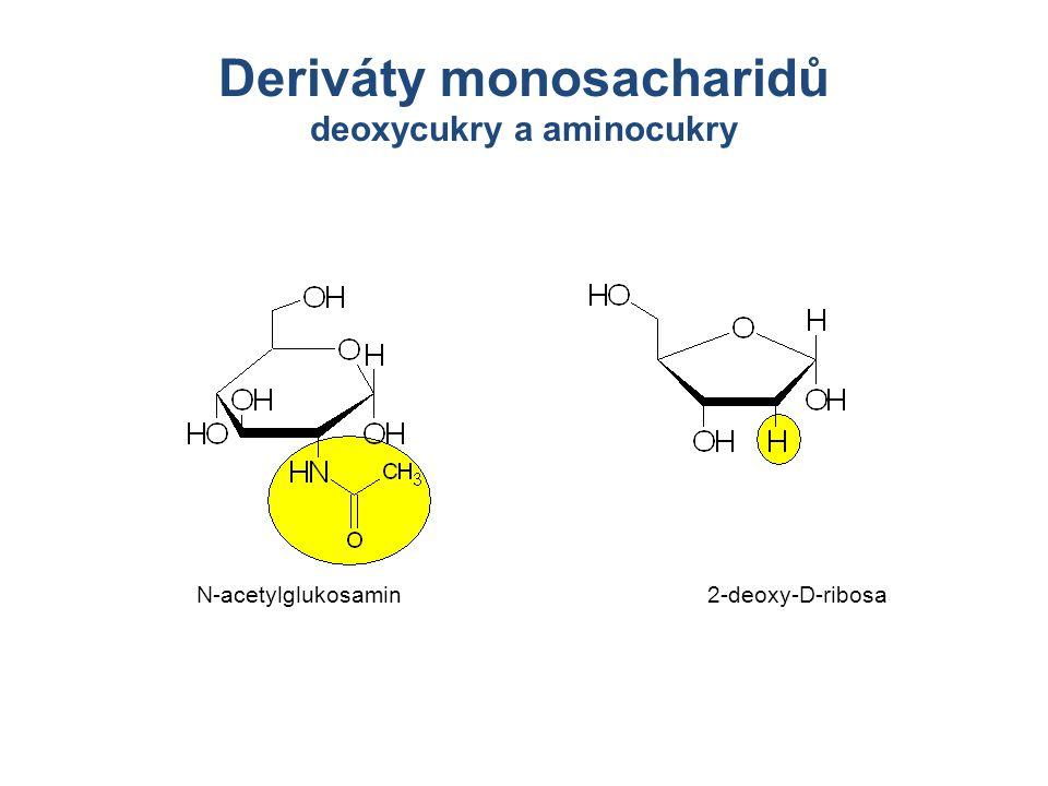Deriváty monosacharidů deoxycukry a aminocukry N-acetylglukosamin2-deoxy-D-ribosa
