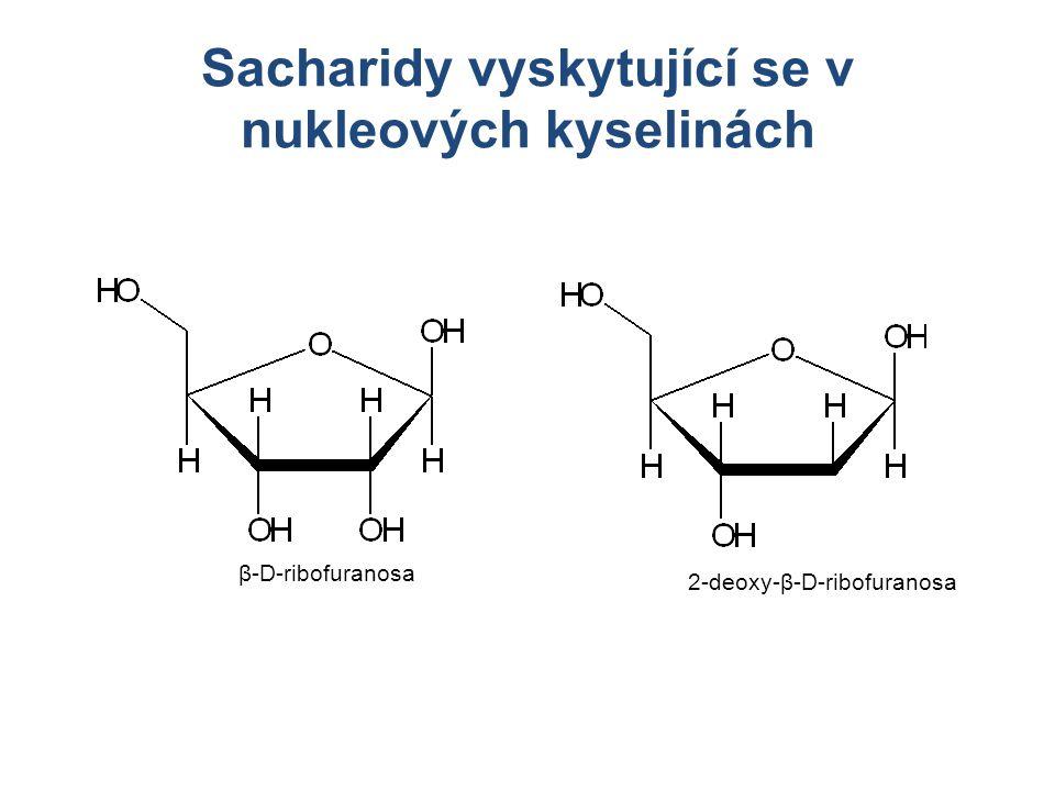 Sacharidy vyskytující se v nukleových kyselinách β-D-ribofuranosa 2-deoxy-β-D-ribofuranosa