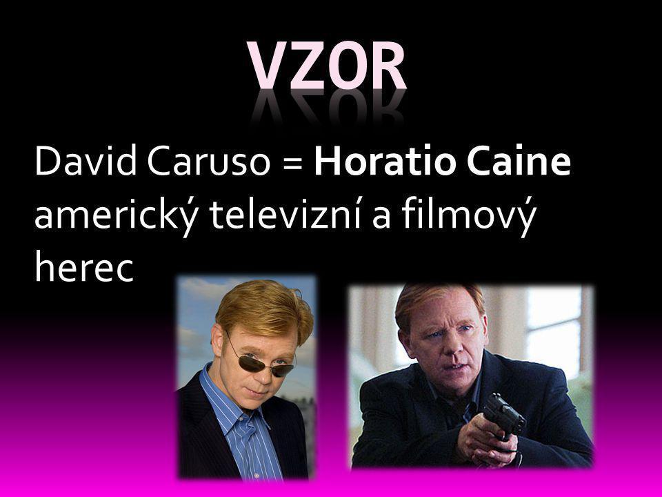 David Caruso = Horatio Caine americký televizní a filmový herec
