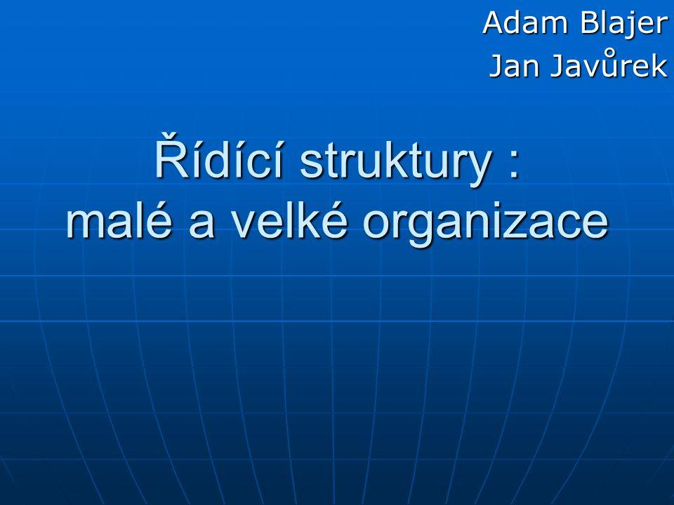 Řídící struktury : malé a velké organizace Adam Blajer Jan Javůrek