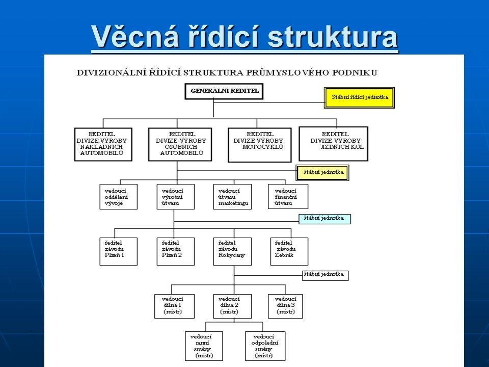 Věcná řídící struktura
