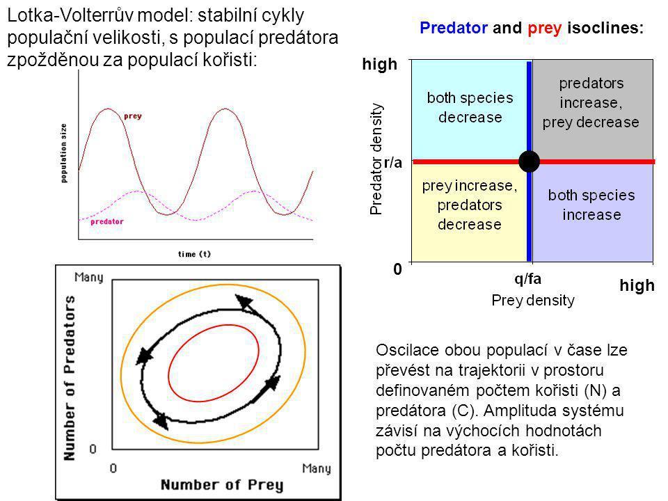 Lotka-Volterrův model: stabilní cykly populační velikosti, s populací predátora zpožděnou za populací kořisti: Predator and prey isoclines: 0 high Oscilace obou populací v čase lze převést na trajektorii v prostoru definovaném počtem kořisti (N) a predátora (C).
