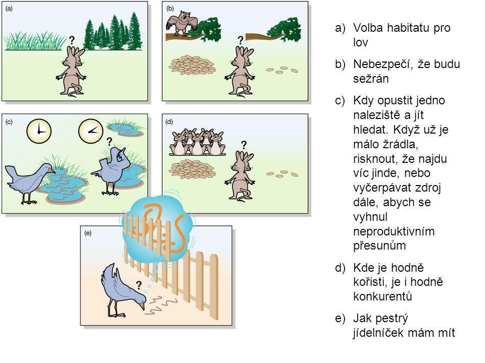 a)Volba habitatu pro lov b)Nebezpečí, že budu sežrán c)Kdy opustit jedno naleziště a jít hledat.