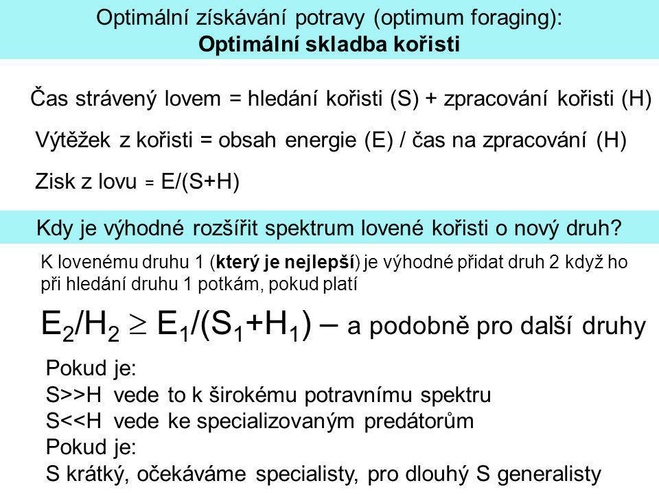 Optimální získávání potravy (optimum foraging): Optimální skladba kořisti Čas strávený lovem = hledání kořisti (S) + zpracování kořisti (H) Výtěžek z kořisti = obsah energie (E) / čas na zpracování (H) K lovenému druhu 1 (který je nejlepší) je výhodné přidat druh 2 když ho při hledání druhu 1 potkám, pokud platí E 2 /H 2  E 1 /(S 1 +H 1 ) – a podobně pro další druhy Pokud je: S>>H vede to k širokému potravnímu spektru S<<H vede ke specializovaným predátorům Pokud je: S krátký, očekáváme specialisty, pro dlouhý S generalisty Kdy je výhodné rozšířit spektrum lovené kořisti o nový druh.