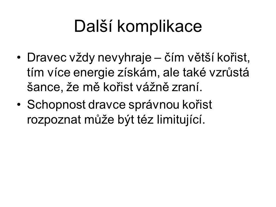 Další komplikace Dravec vždy nevyhraje – čím větší kořist, tím více energie získám, ale také vzrůstá šance, že mě kořist vážně zraní.