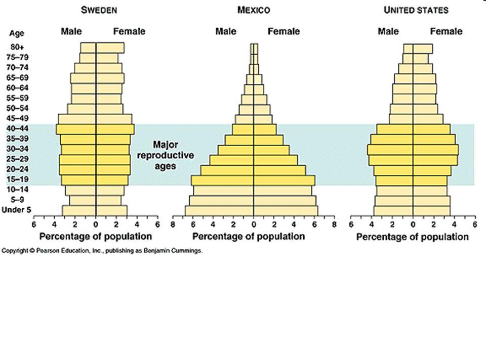 Trojúhelníkový graf