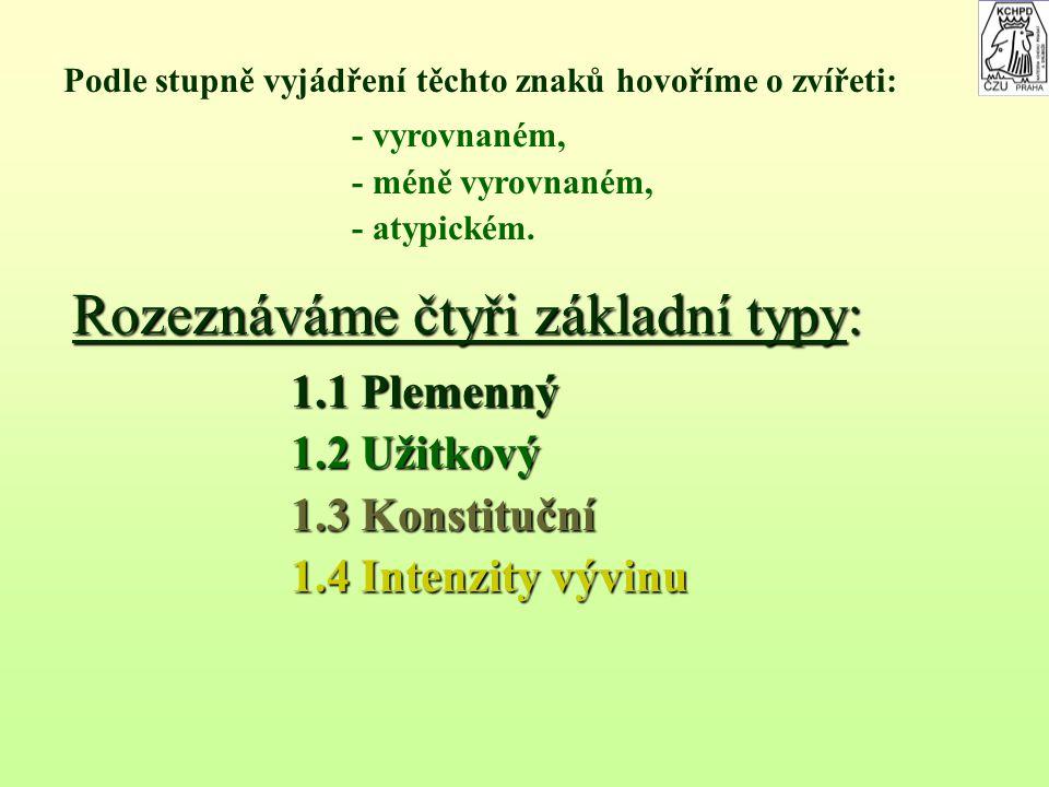 3.Zevnějšek 3.