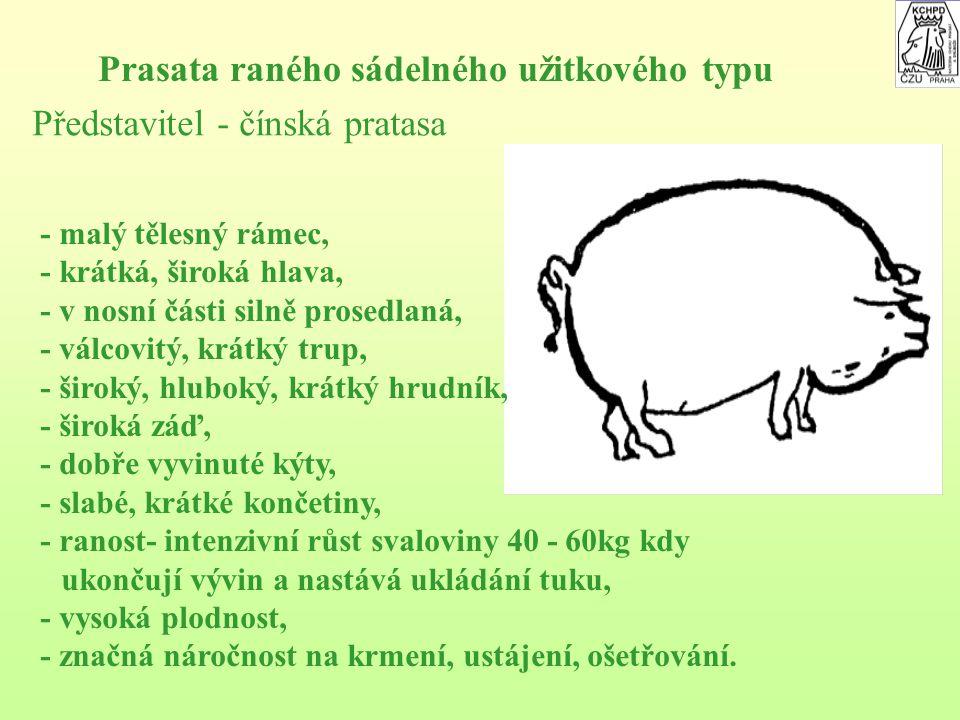 Na základě vyšlechtění kulturních plemen prasat na různou ranost a schopnost tvorby masa a tuku je možno rozlišovat následující užitkové typy prasat: