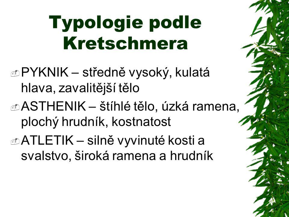 Typologie podle Kretschmera  PYKNIK – středně vysoký, kulatá hlava, zavalitější tělo  ASTHENIK – štíhlé tělo, úzká ramena, plochý hrudník, kostnatos
