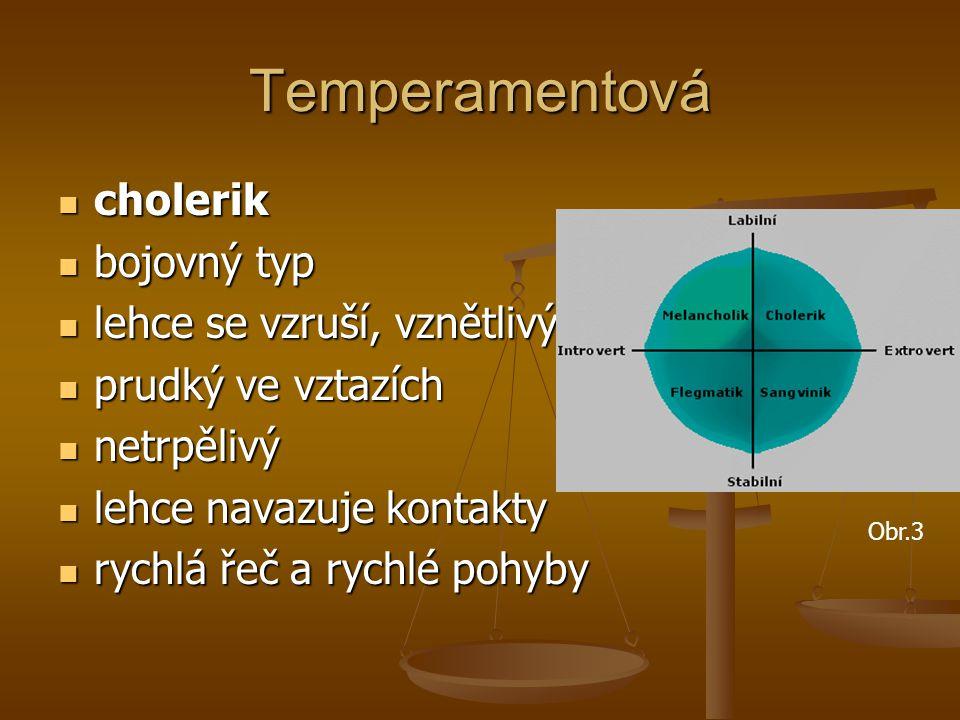 Temperamentová cholerik cholerik bojovný typ bojovný typ lehce se vzruší, vznětlivý lehce se vzruší, vznětlivý prudký ve vztazích prudký ve vztazích n