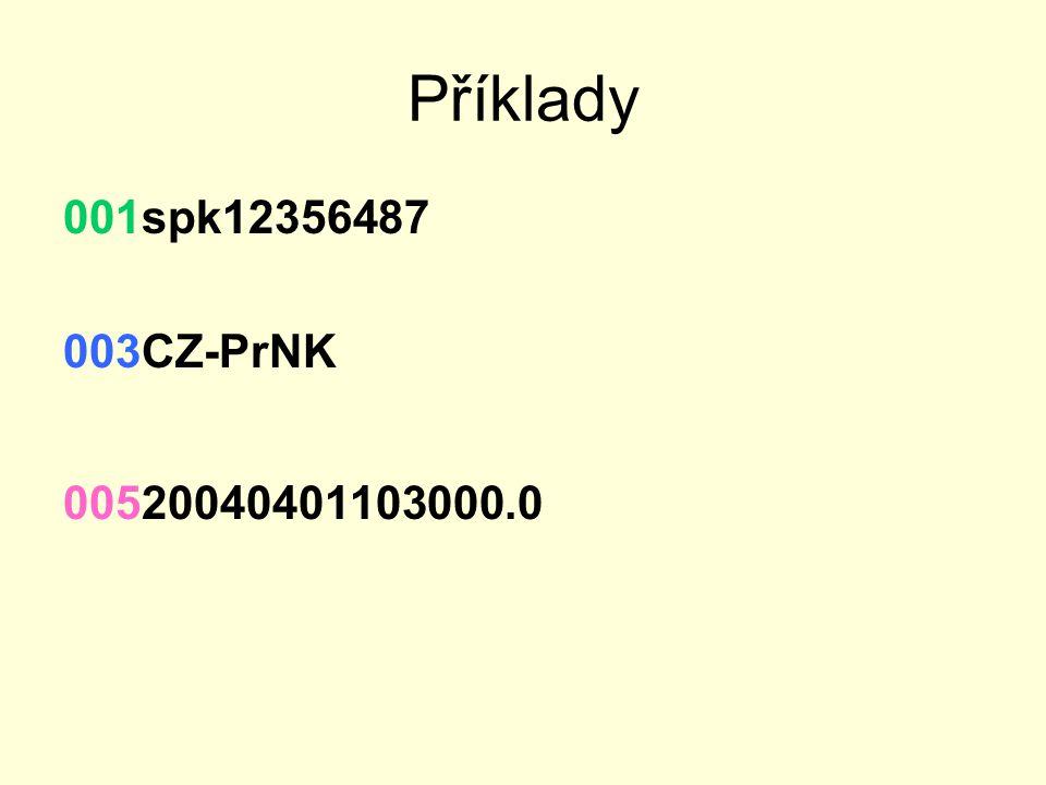 Příklady 001spk12356487 003CZ-PrNK 00520040401103000.0