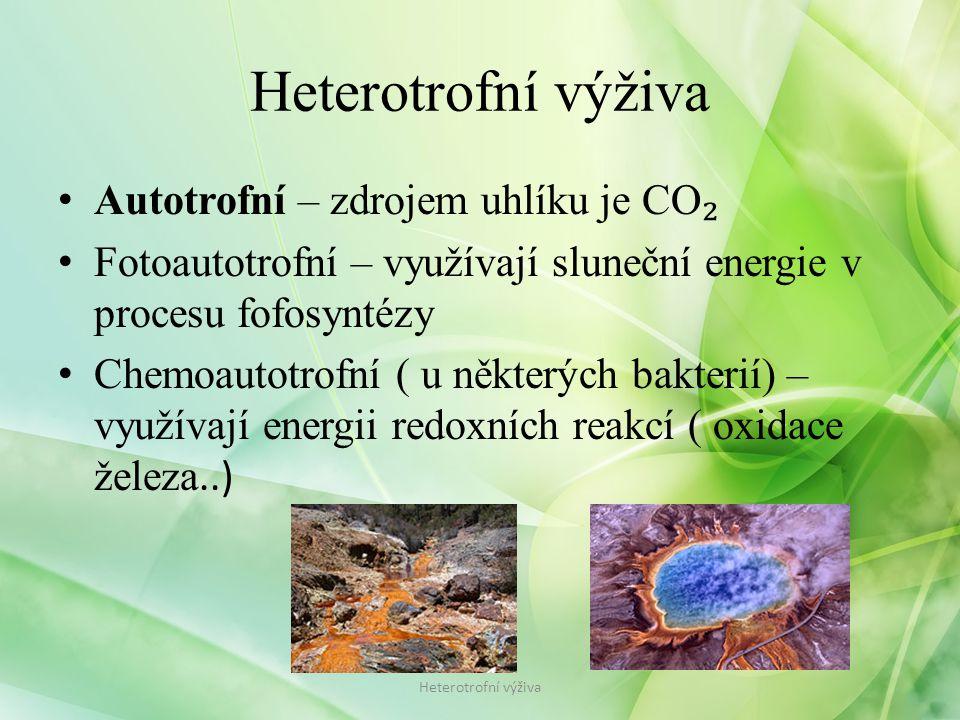 Autotrofní – zdrojem uhlíku je CO ₂ Fotoautotrofní – využívají sluneční energie v procesu fofosyntézy Chemoautotrofní ( u některých bakterií) – využívají energii redoxních reakcí ( oxidace železa..) Heterotrofní výživa