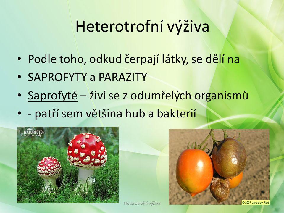 Podle toho, odkud čerpají látky, se dělí na SAPROFYTY a PARAZITY Saprofyté – živí se z odumřelých organismů - patří sem většina hub a bakterií Heterotrofní výživa