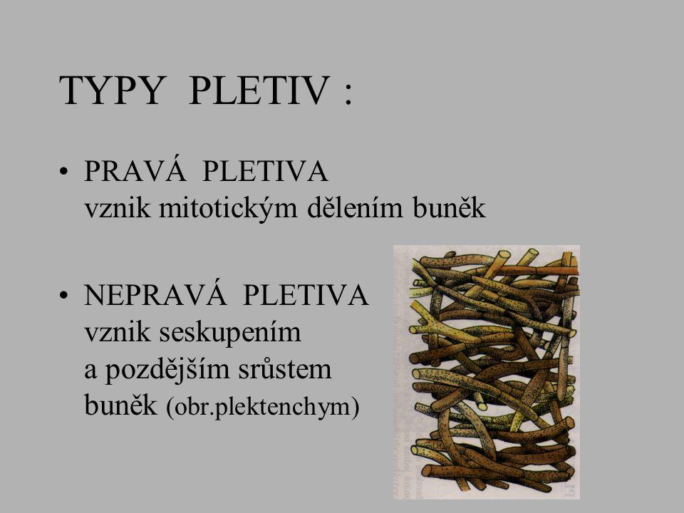 ROSTLINNÁ PLETIVA TYPY PLETIV ROZDĚLENÍ PLETIV (podle stavby, podle funkce) VÝSKYT PLETIV V ROSTLINÁCH