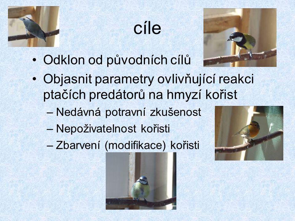 """Výsledky a závěry (prozatimní) Vliv štítku – ŠVŠ je napadán méně často (PM - neprůkazně) –vliv neophobie Vliv zkušenosti se švábem – ptáci znalí švába napadají ŠVŠ častěji než neznalí (PM - neprůkazně) –neophobie ze štítku je potlačena Vliv typu štítku – ŠVP je napadán méně často než ŠVŠ, ale pouze ptáky švába neznalými (PC - neprůkazně) –aposematický signál je funkční pouze u """"naivních ptáků"""