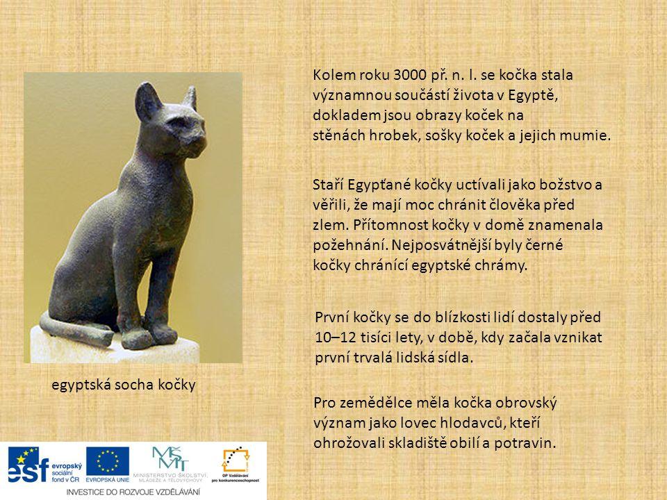 egyptská socha kočky První kočky se do blízkosti lidí dostaly před 10–12 tisíci lety, v době, kdy začala vznikat první trvalá lidská sídla. Kolem roku