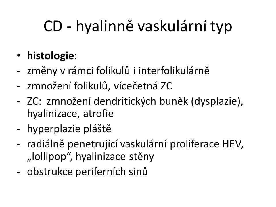 CD - hyalinně vaskulární typ histologie: -změny v rámci folikulů i interfolikulárně -zmnožení folikulů, vícečetná ZC -ZC: zmnožení dendritických buněk