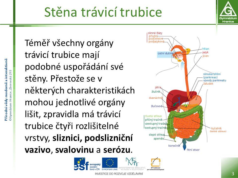 Přírodní vědy moderně a interaktivně ©Gymnázium Hranice, Zborovská 293 Stěna trávicí trubice Téměř všechny orgány trávicí trubice mají podobné uspořád