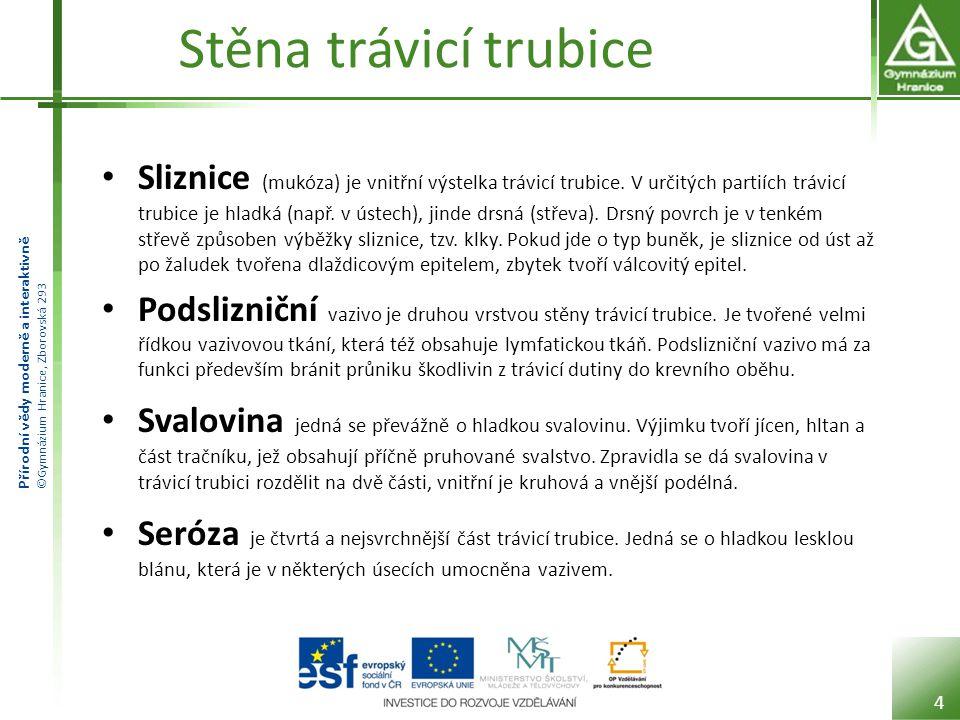 Přírodní vědy moderně a interaktivně ©Gymnázium Hranice, Zborovská 293 Stěna trávicí trubice Sliznice (mukóza) je vnitřní výstelka trávicí trubice. V