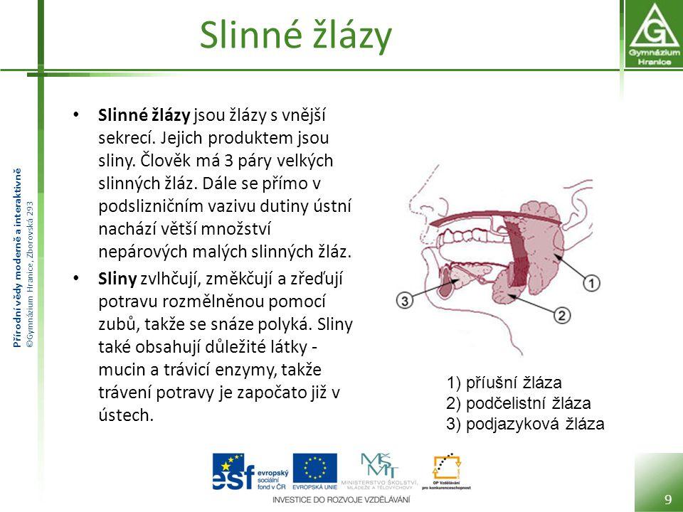Přírodní vědy moderně a interaktivně ©Gymnázium Hranice, Zborovská 293 Slinné žlázy Slinné žlázy jsou žlázy s vnější sekrecí. Jejich produktem jsou sl