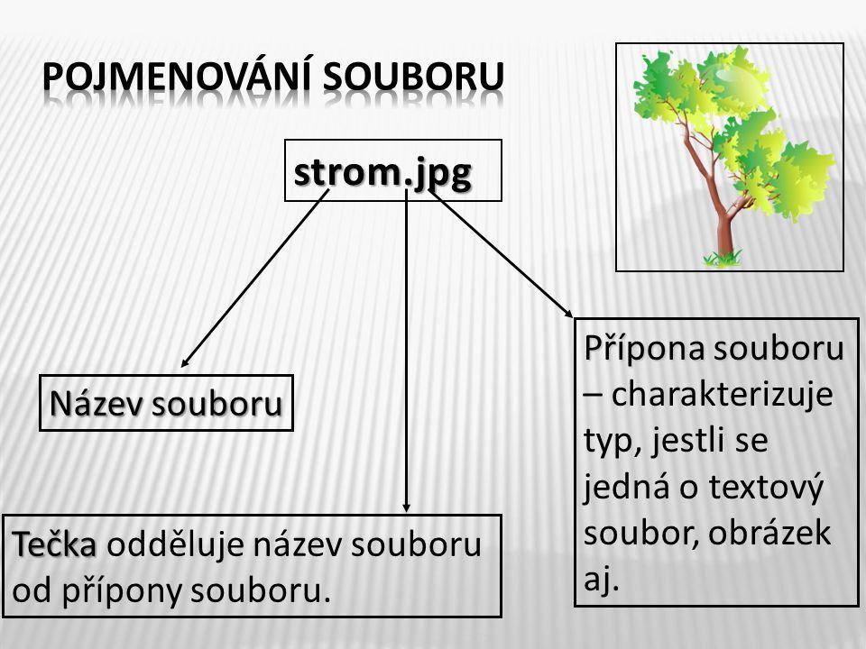strom.jpg Název souboru Tečka Tečka odděluje název souboru od přípony souboru. Přípona souboru Přípona souboru – charakterizuje typ, jestli se jedná o