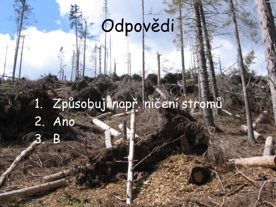 Odpovědi 1.Způsobují např. ničení stromů 2.Ano 3.B