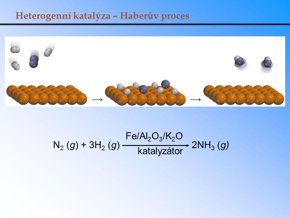 Heterogenní katalýza – Haberův proces N 2 (g) + 3H 2 (g) 2NH 3 (g) Fe/Al 2 O 3 /K 2 O katalyzátor