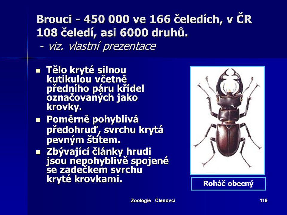 Zoologie - Členovci118 Motýli – viz. vlastní prezentace Ústní ústrojí sací, svinutelný sosák tvořen vnějším výběžkem (galea) čelistí. Ústní ústrojí sa