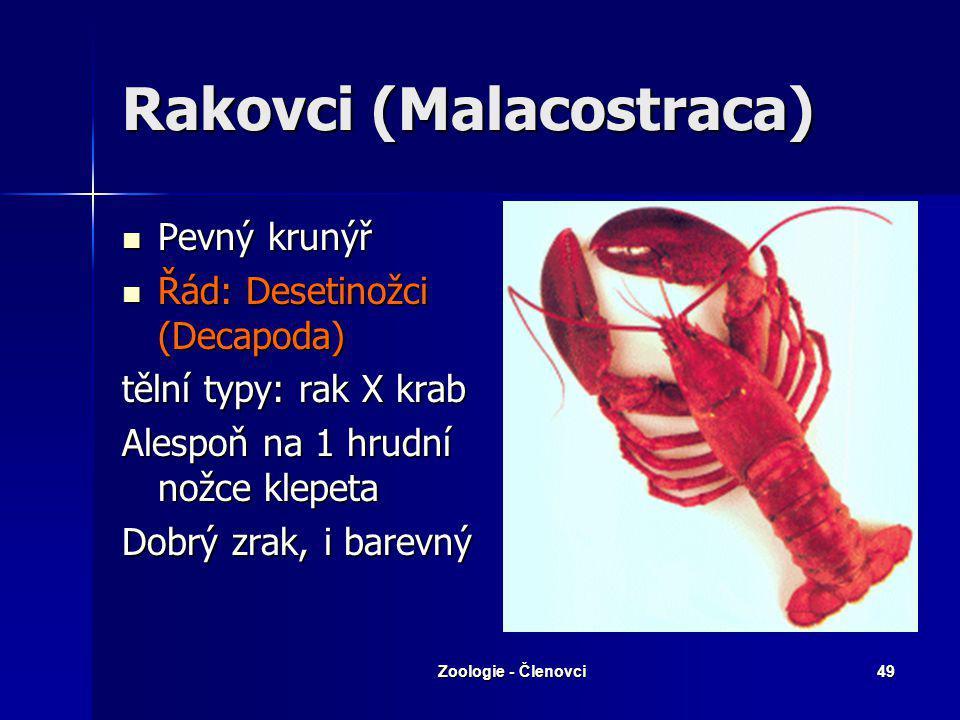 Zoologie - Členovci48 Svijonožci (Cirripedia) Mořští, přisedlí Mořští, přisedlí Hermafrodité Hermafrodité Vilejš stvolnatý svijonožec