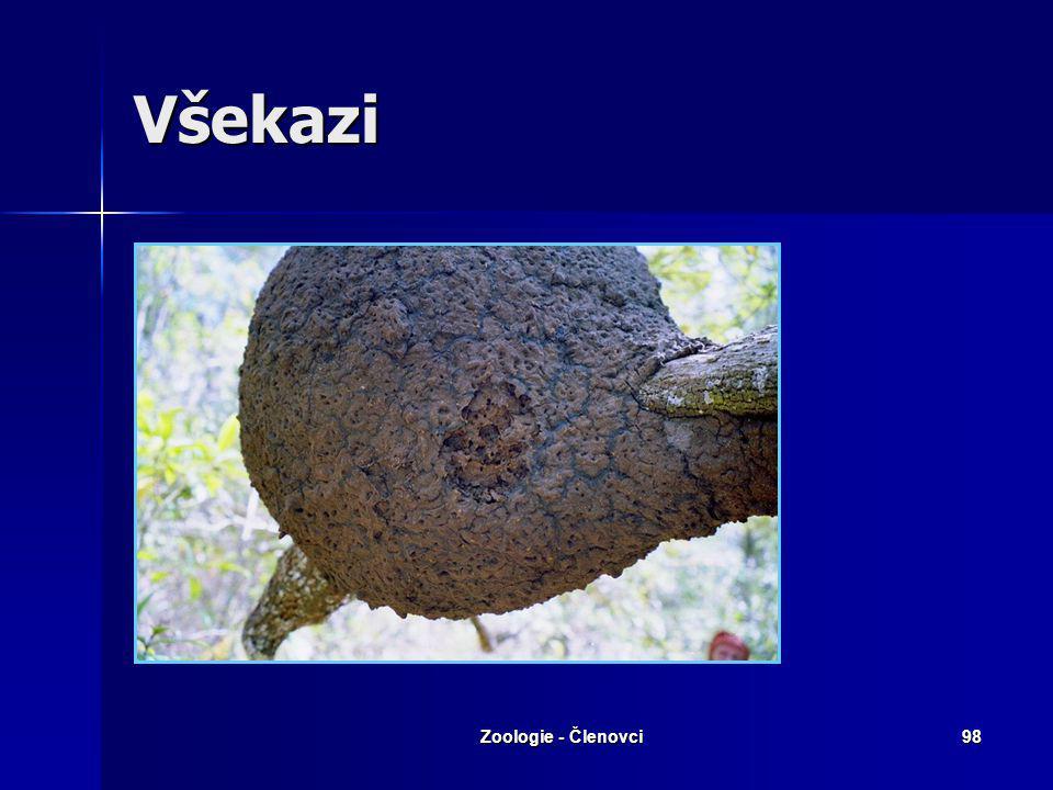 Zoologie - Členovci97 Všekazi