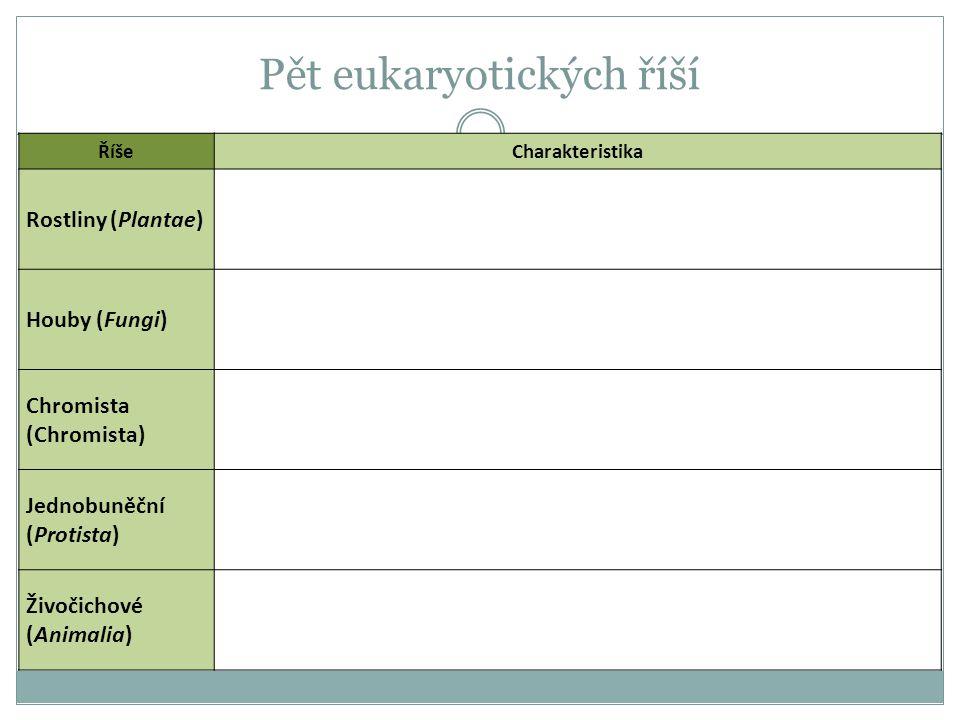 Pět eukaryotických říší ŘíšeCharakteristika Rostliny (Plantae) Houby (Fungi) Chromista (Chromista) Jednobuněční (Protista) Živočichové (Animalia)