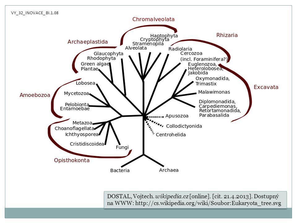 DOSTAL, Vojtech. wikipedia.cz [online]. [cit. 21.4.2013]. Dostupný na WWW: http://cs.wikipedia.org/wiki/Soubor:Eukaryota_tree.svg VY_32_INOVACE_ BI.1.