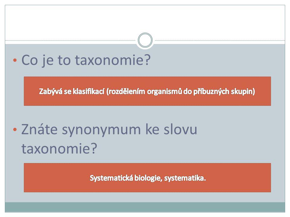 Co je to taxonomie? Znáte synonymum ke slovu taxonomie?