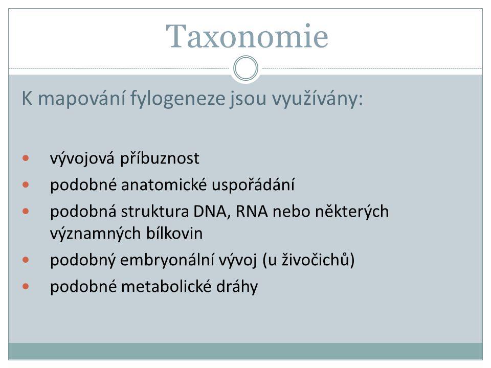 Taxonomie K mapování fylogeneze jsou využívány: vývojová příbuznost podobné anatomické uspořádání podobná struktura DNA, RNA nebo některých významných