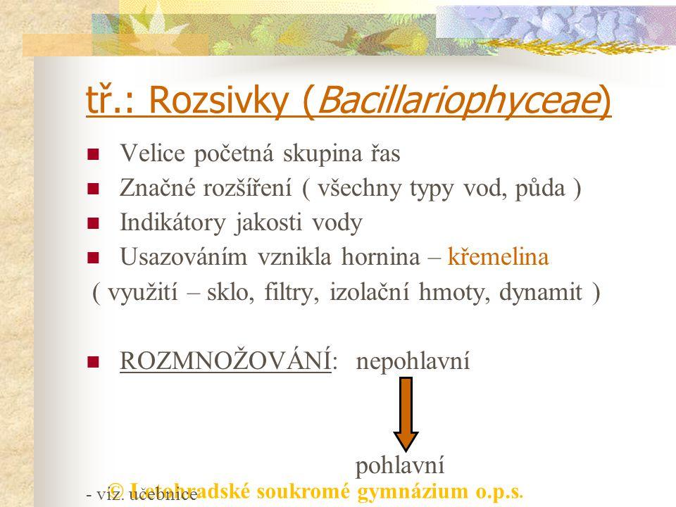 © Letohradské soukromé gymnázium o.p.s. tř.: Rozsivky (Bacillariophyceae) Velice početná skupina řas Značné rozšíření ( všechny typy vod, půda ) Indik