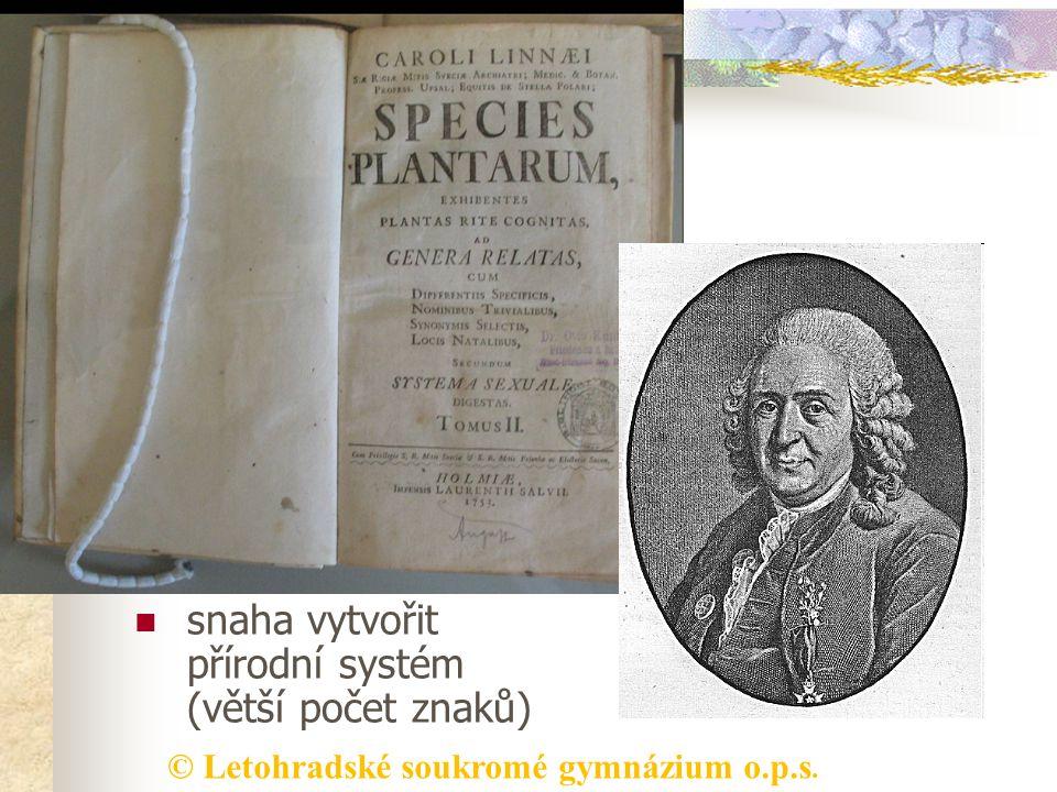 © Letohradské soukromé gymnázium o.p.s. Botanický systém umělý systém 18. století Carl Linné -švédský lékař a přírodovědec -Species Plantarum - popsal