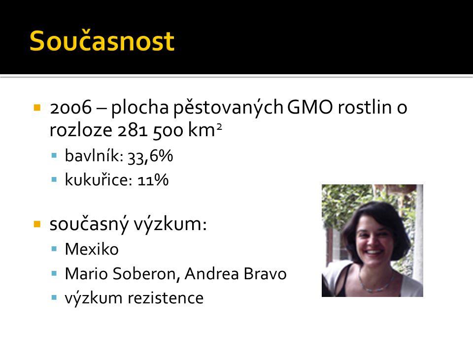  2006 – plocha pěstovaných GMO rostlin o rozloze 281 500 km 2  bavlník: 33,6%  kukuřice: 11%  současný výzkum:  Mexiko  Mario Soberon, Andrea Br