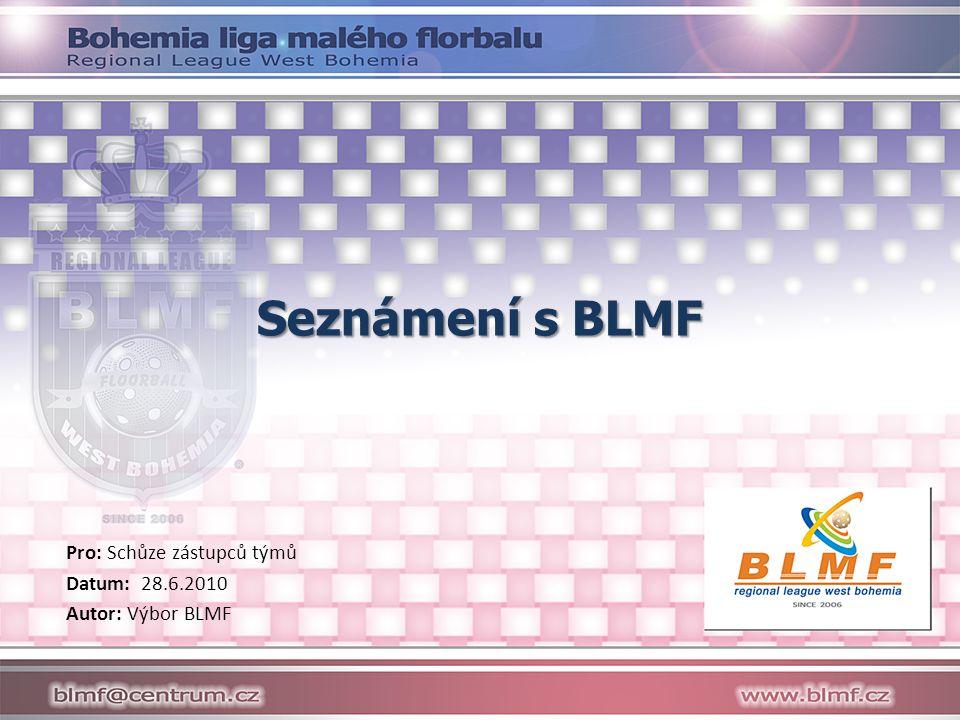 Seznámení s BLMF Pro: Schůze zástupců týmů Datum: 28.6.2010 Autor: Výbor BLMF