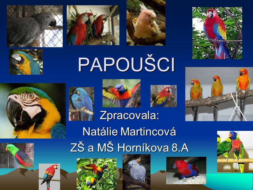 PAPOUŠCI Zpracovala: Natálie Martincová ZŠ a MŠ Horníkova 8.A