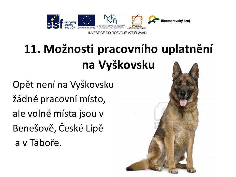 11. Možnosti pracovního uplatnění na Vyškovsku Opět není na Vyškovsku žádné pracovní místo, ale volné místa jsou v Benešově, České Lípě a v Táboře.