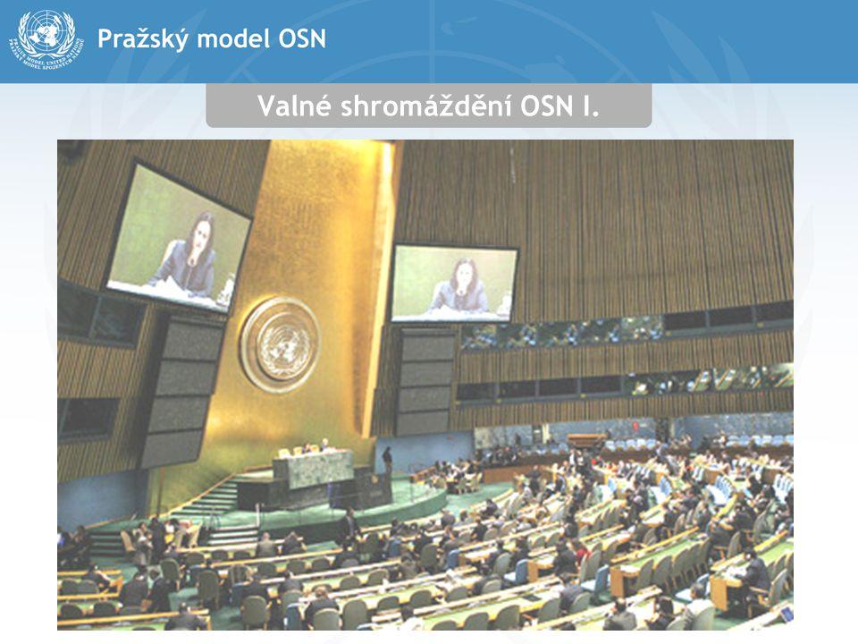 Valné shromáždění OSN I.