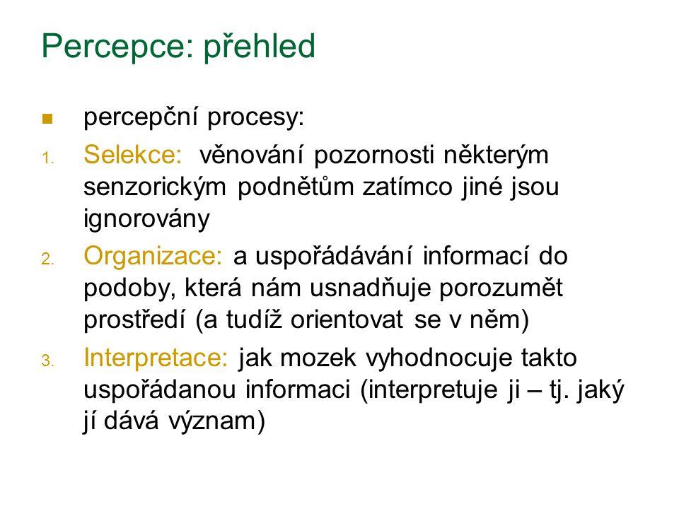 Percepce: přehled percepční procesy: 1. Selekce: věnování pozornosti některým senzorickým podnětům zatímco jiné jsou ignorovány 2. Organizace: a uspoř